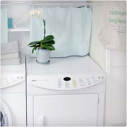 Powder or Liquid Detergent