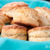 I can't get enough of these homemade biscuits! All of these recipes are fantastic.