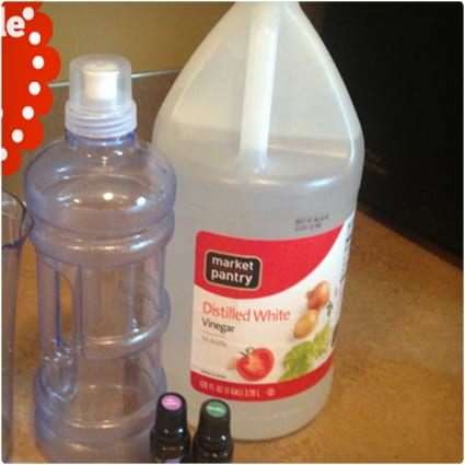 Homemade Fabric Softener Recipe