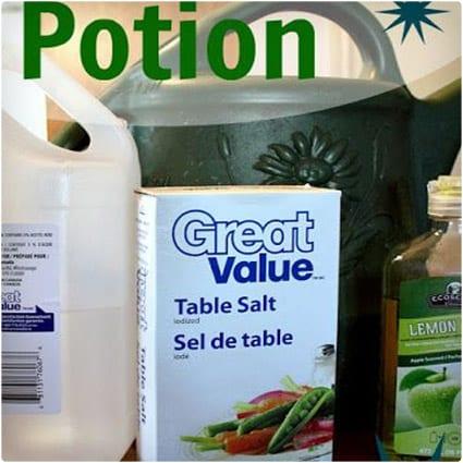 Natural Weed Killing Potion