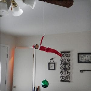 Ceiling Fan Elf