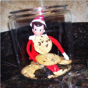 Cookie Monster Elf