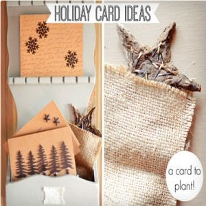 Metal Accents Cards