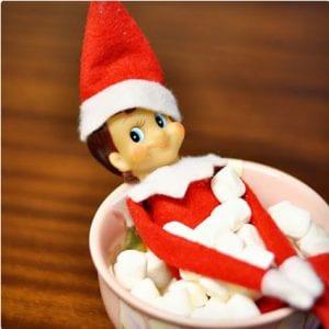 Snowball Fight Elf