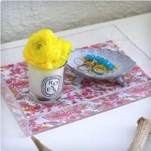 Spring Lucite Trays