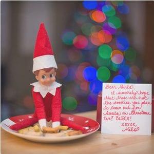 Worst Cookies Ever Elf