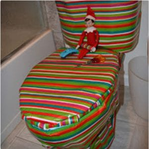 Wrapped Toilet