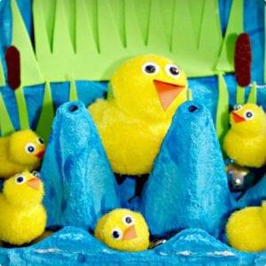 5 Little Ducks Habitat