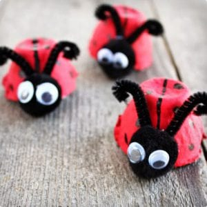 Lady Bugs Made From Egg Cartons