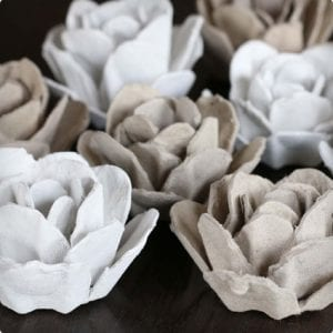 The Quintessential Egg Carton Rose
