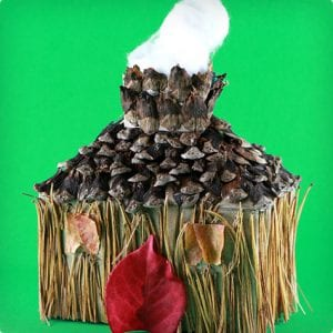 Pine Cone Forrest House Craft