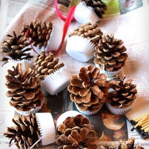 Scented Pine Cone Fire Starters
