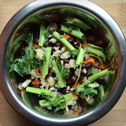 3 Plant Based Homemade Dog Foods