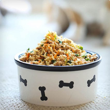 Homemade Dog Food Recipe and Guide