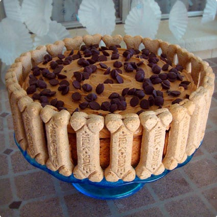 Peanut Butter and Carob Chip Doggie Birthday Cake