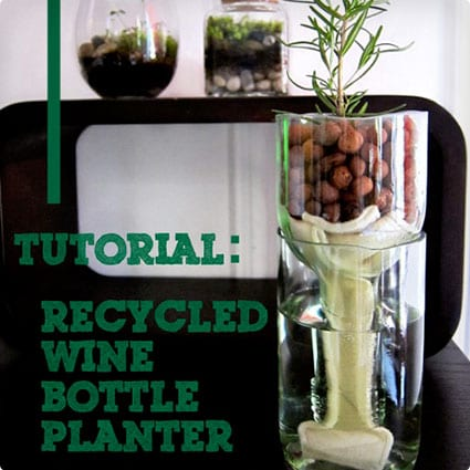 Self Watering Planter Made From Wine Bottles