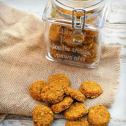 Turmeric and Fish Homemade Dog Treats