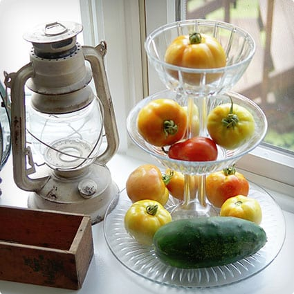 Wine Bottle Veggie Stand/Display Dishes