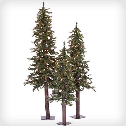 Natural Alpine Christmas Trees, 2' 3' 4', Green - Unlit