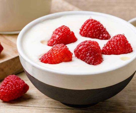 Homemade Instant Pot Yogurt