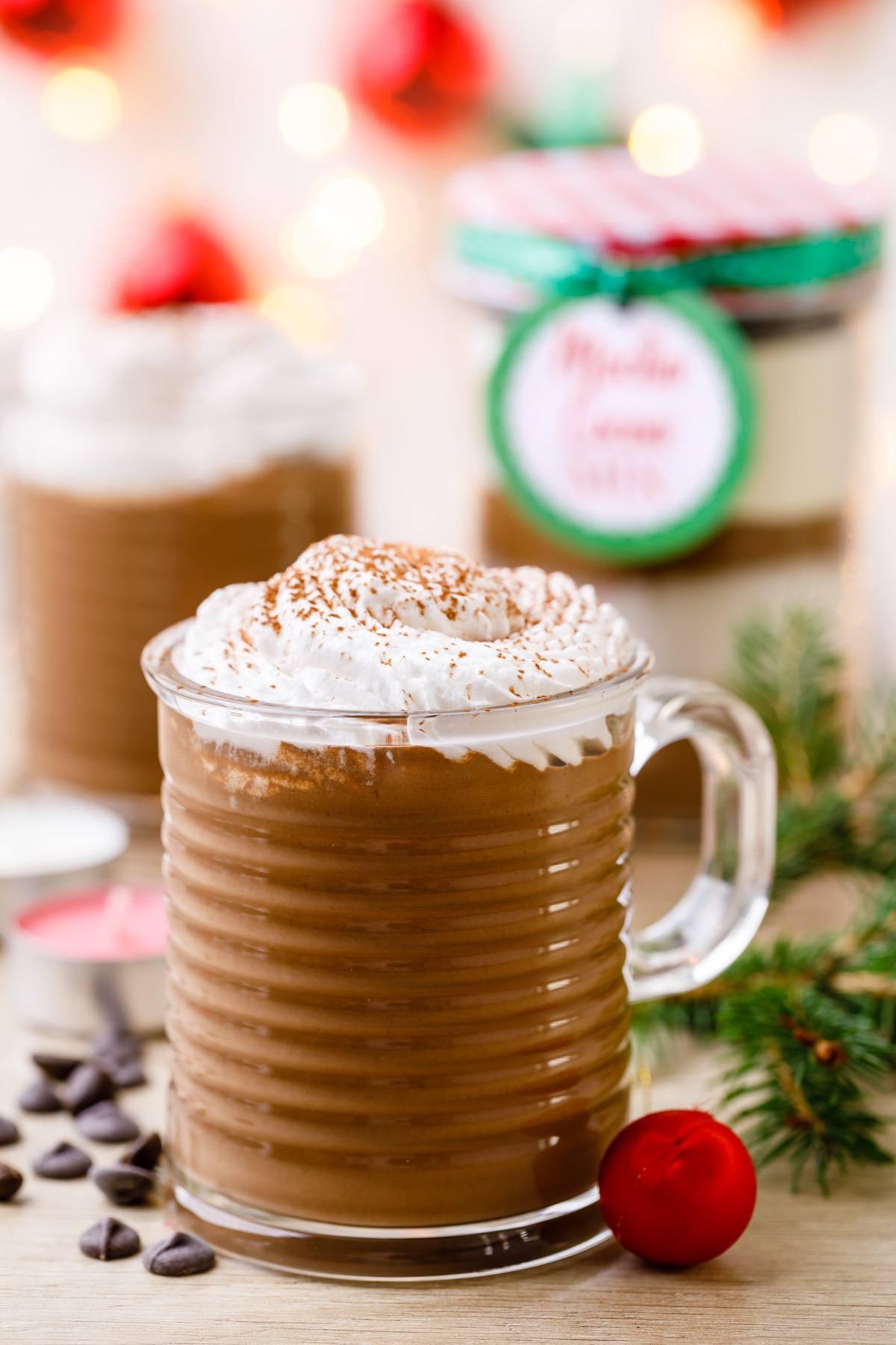 Mocha Hot Cocoa Mix