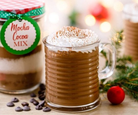 Mocha Hot Cocoa Mix