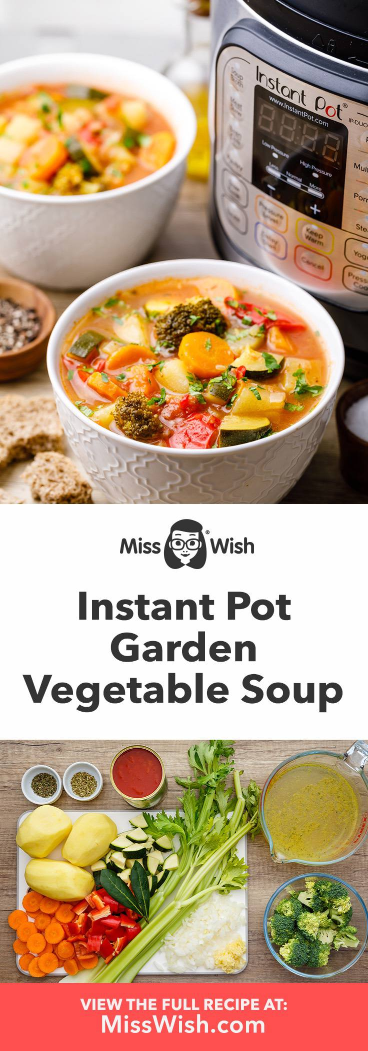 Instant Pot Garden Vegetable Soup with Fresh Vegetables
