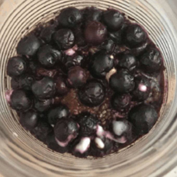 Instant Pot Blueberry Breakfast