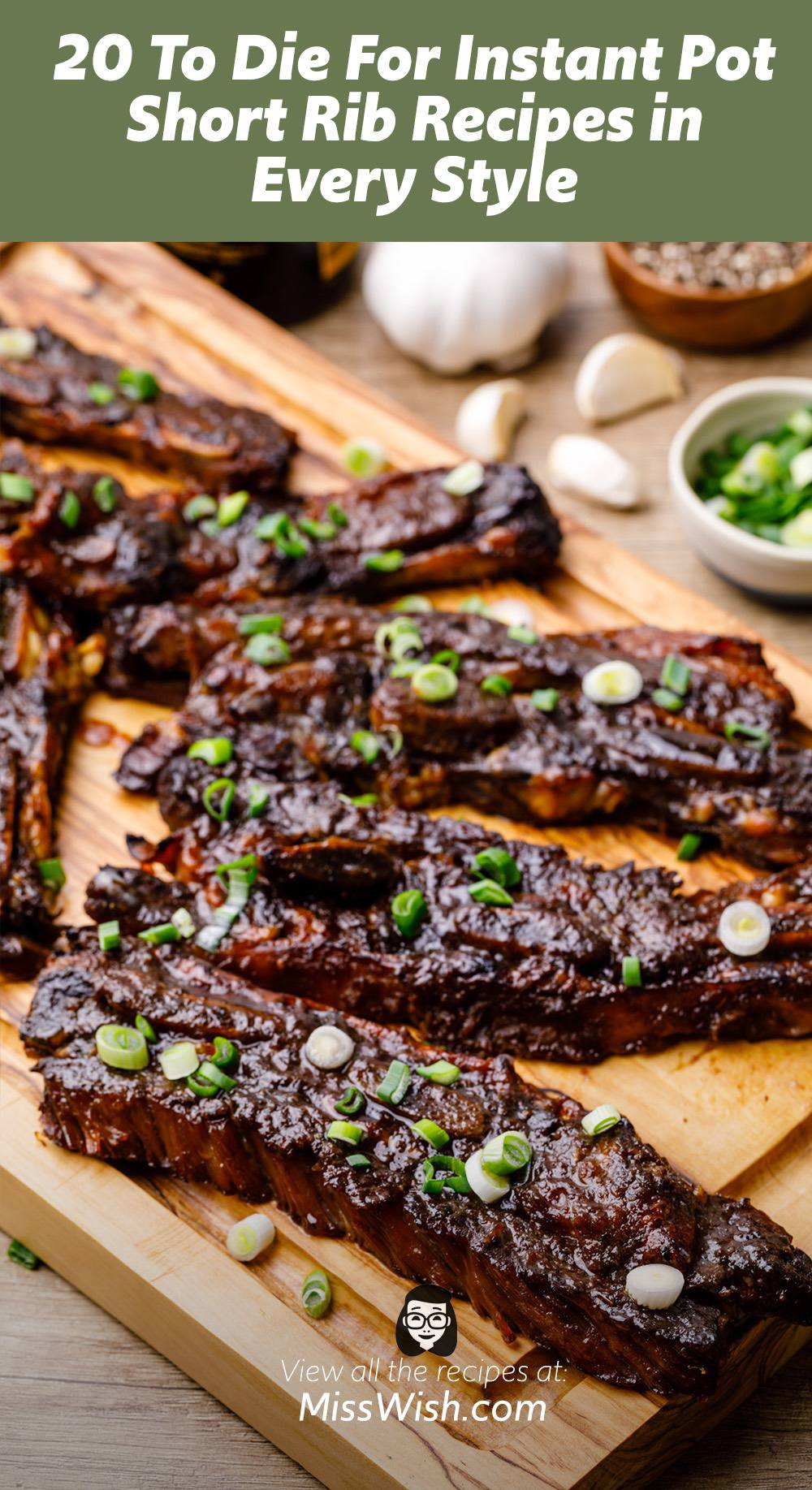 20 To Die For Instant Pot Short Rib Recipes in Every Style