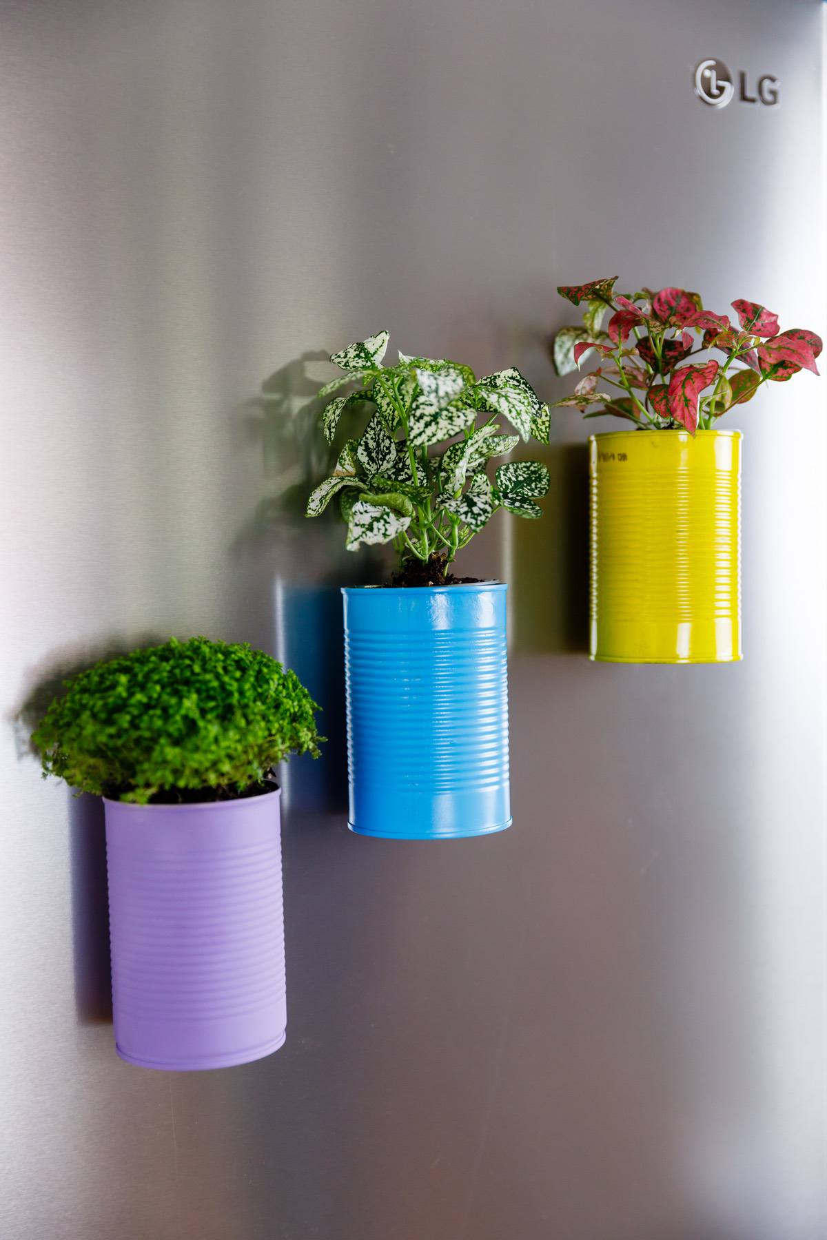 Diy Magnetic Plant And Flower Pots