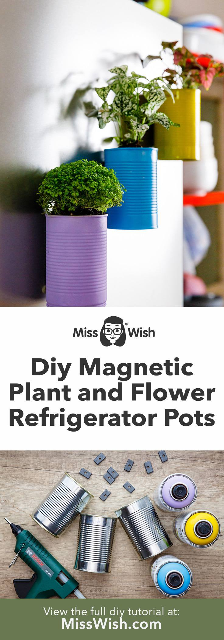 Diy Magnetic Plant and Flower Pots for the Refrigerator